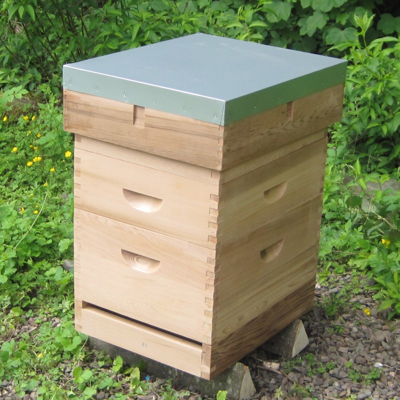 Langstroth Beehive With 6 Quot Flat Roof Langstroth Hive Langstroth Beehive