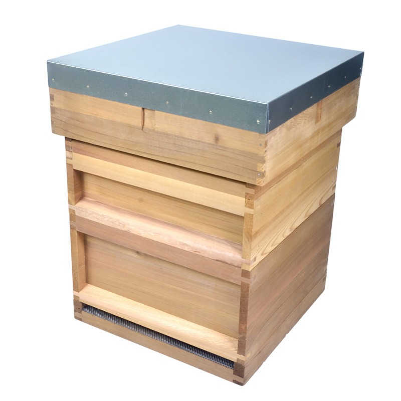 how to get rid of beehive in roof
