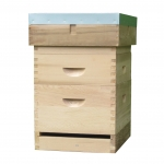 langstroth beehive with 6