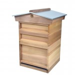 national hive with deep brood (14x12) and gabled roof